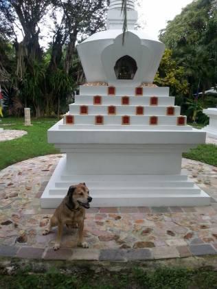 sengay stupa 2016