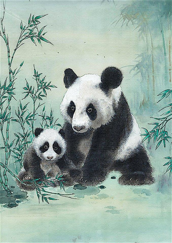 hhk-pandas
