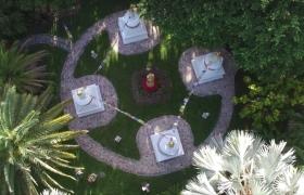 garden-air-shot